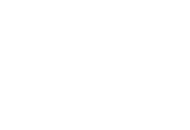 our logo which the letters DS surrounded by a box